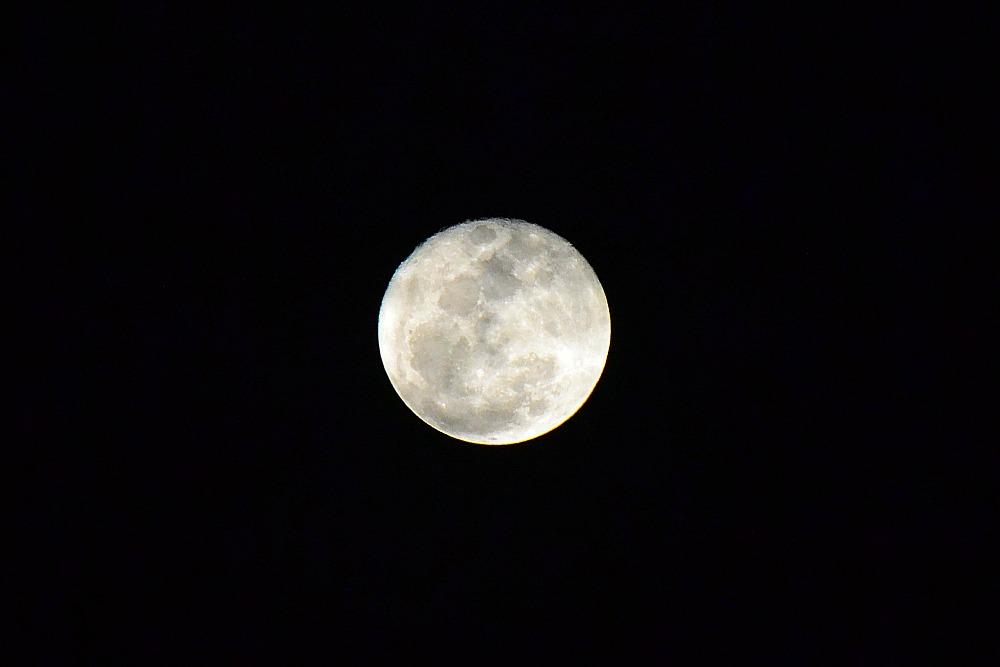 Full moon | Eat Yourself Green